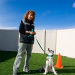 Lori Cruser, Owner, Dog Trainer