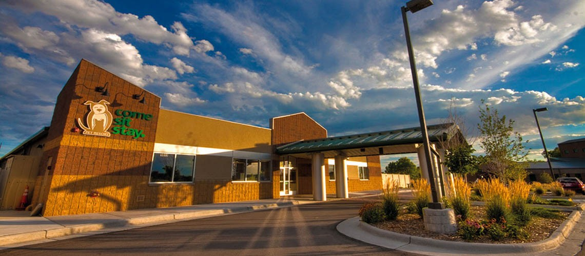Come Sit Stay - Colorado's Favorite Pet Boarding Daycare
